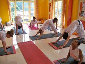 daily yoga class in dharamsala