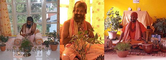 yoga sivadas dharamsala india