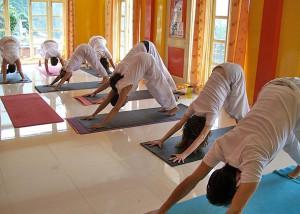 yoga course in dharamsala india