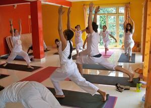 yoga classes in dharamsala india