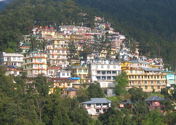 yoga center in mcleodganj