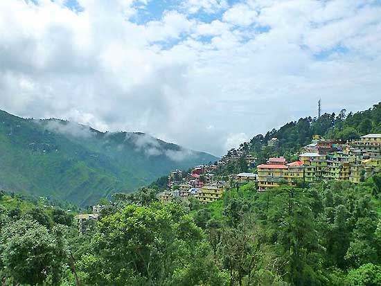 about yoga in dharamsla, about dharamsala