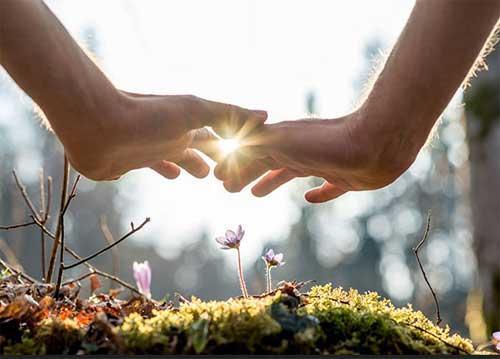 reiki courses in dharamsala, reiki healing india