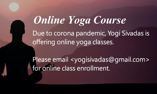 online yoga courses in india