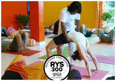 300 hour yoga teacher training in dharamsala in india